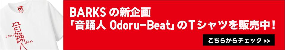 odoru_beat_t_960_170